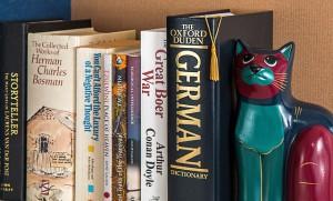 bookshelf-791011_640